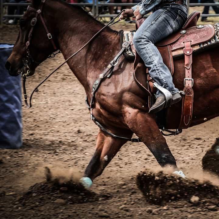 Rodeo Cowboy Rounding Barrel