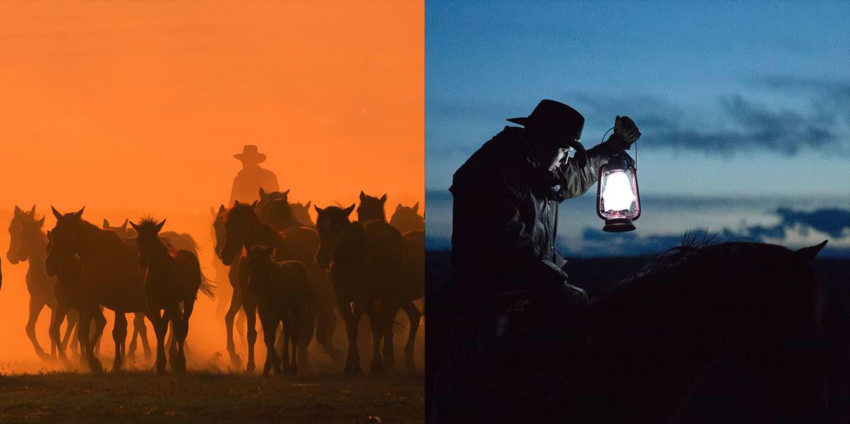 Cowboy rustling horses and cowboy riding horseback at night while holding up a lit lantern